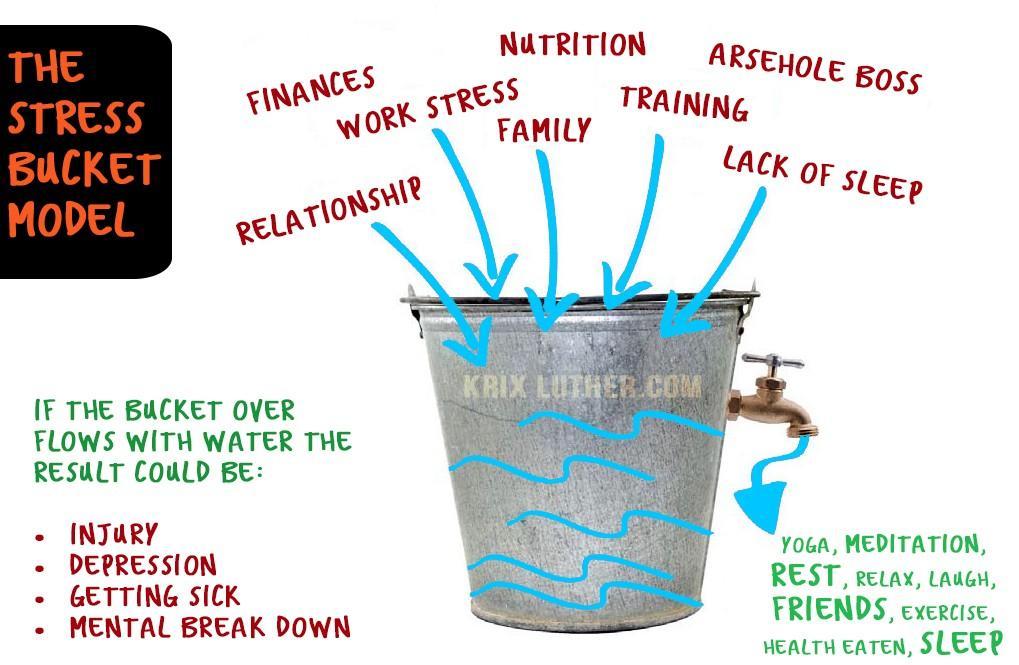 Stress Bucket Model