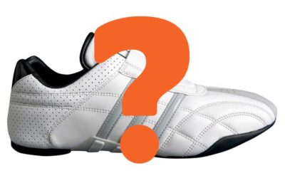 Top 5 Best Martial Arts Shoes