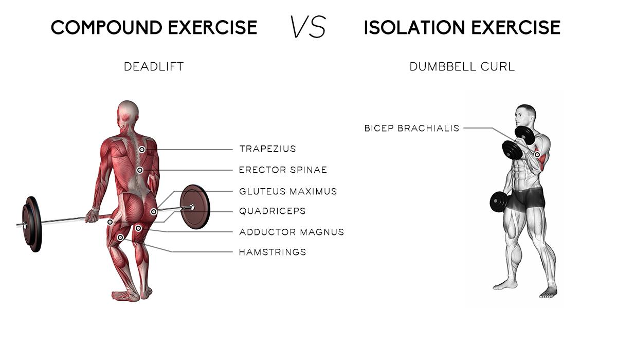 Compound V Isolation Exercises