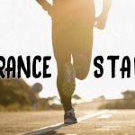 Stamina vs Endurance Feature
